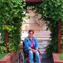 Prechádzky na elektrickom vozíku