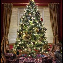 Farebné Vianoce doma